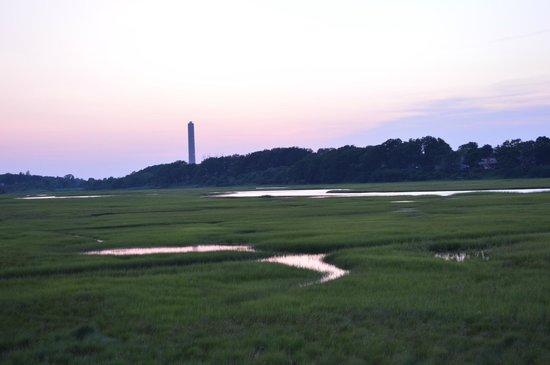 Boardwalk: Walking across the marsh