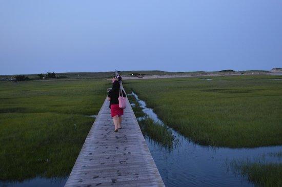 Boardwalk: Comfortable walk