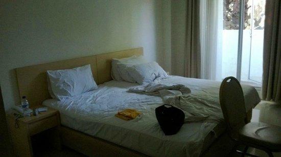 Griya Sintesa Hotel: camera