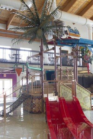 Fairfield Inn & Suites Watervliet St. Joseph: Surfari Joe's