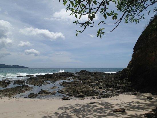 Flamingo Beach Resort And Spa: beach view
