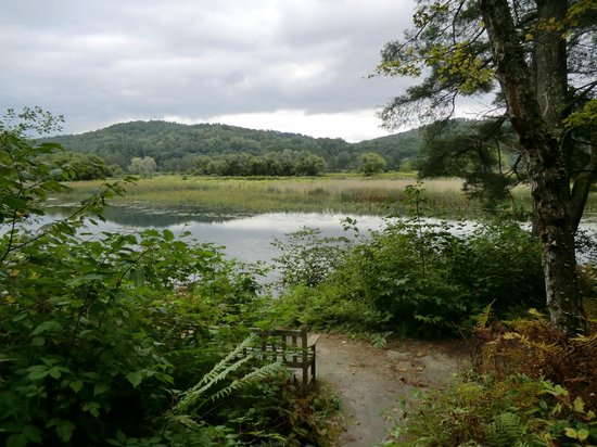 VINS Nature Center: Along the trail