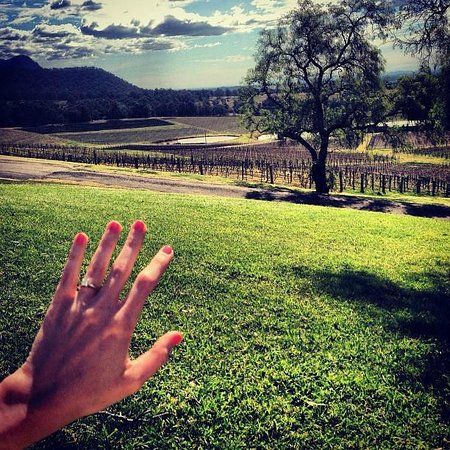 Audrey Wilkinson Vineyard: The rock and the vineyards