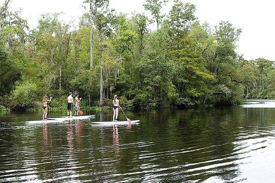Carolina Waterman: Heading down the river.