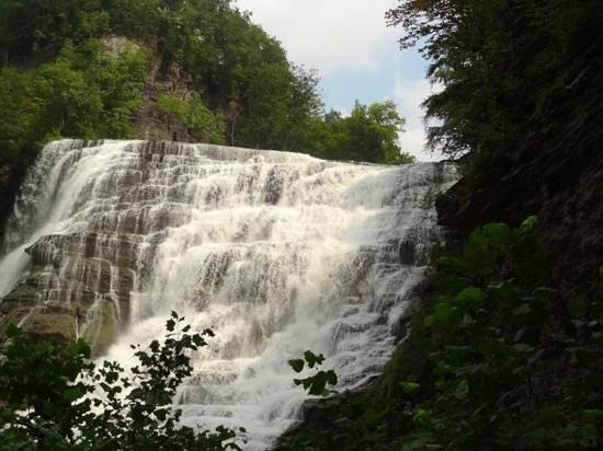 Ithaca Falls Natural Area : ithaca falls.