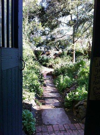 Lavande of Callington: secret garden