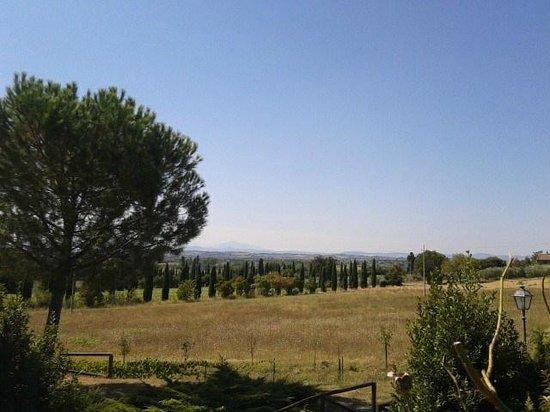 Relais Borgo San Pietro: Panorama dalla piscina