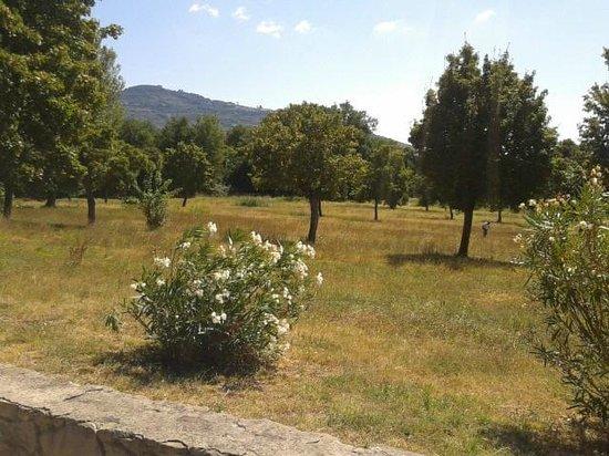 Relais Borgo San Pietro: Un pezzo dell'immenso verde