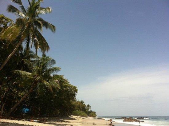 Montezuma Yoga: Montezuma Beach