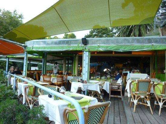 La Calanque de Figuerolles: la terrasse
