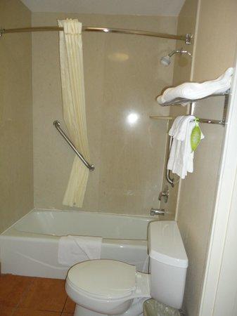 Comfort Inn - Los Angeles / West Sunset Blvd.: Bathroom