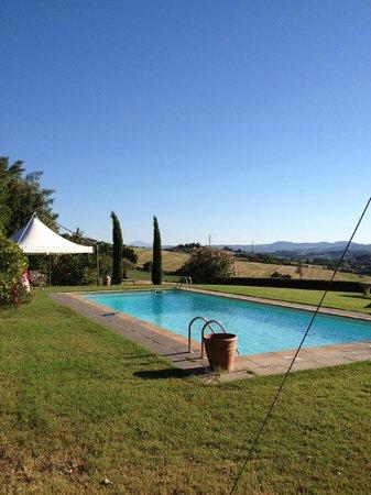 Villa La Lodola: la piscina e il suo panorama
