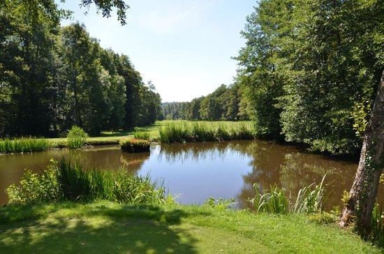 Club Med Vittel Ermitage : golfcorse