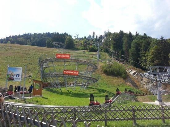 Lienzer Bergbahnen/ Osttirodler Alpine Coaster: La pista all'arrivo