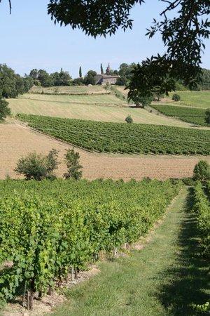 Chateau de Salettes: les alentours