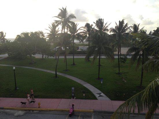 Ocean Blue Hostel: Vista desde la terraza