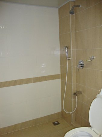 Grand Plaza Munnar : Bathroom