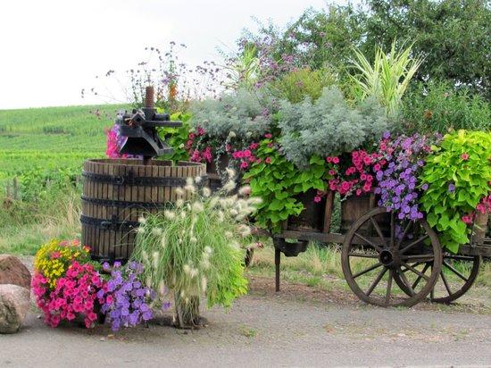 Regioscope Tours: Route du vin