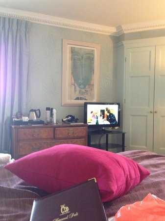Homewood Park Hotel & Spa: tv in the room