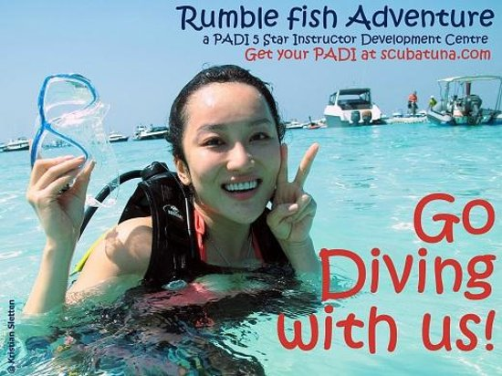 Rumblefish adventure updated 2018 hostel reviews price for Rumble fish summary