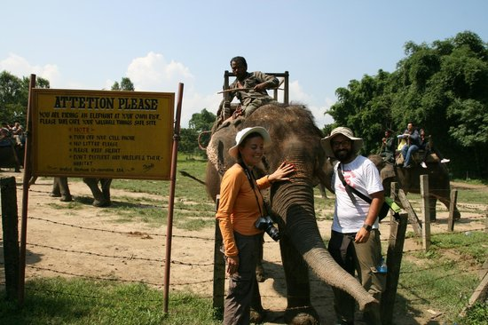 Trek Nepal Adventure's Day Hiking Tour: Safari con gli elefanti - Chitwan