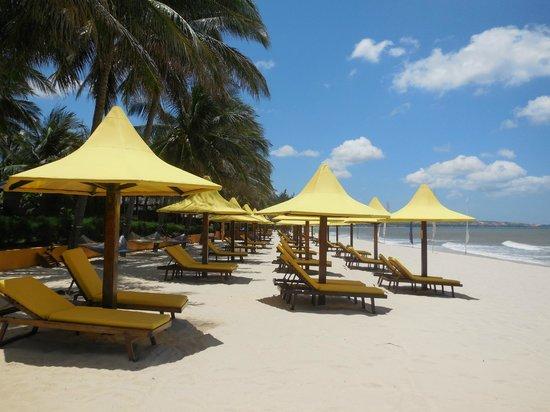 Coco Beach Resort: Пляж