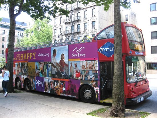 Grayline Bus Tours Nyc Office