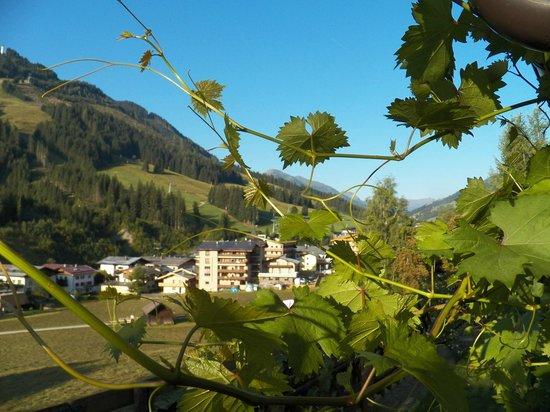 Kohlmais: The Village from our garden terrace