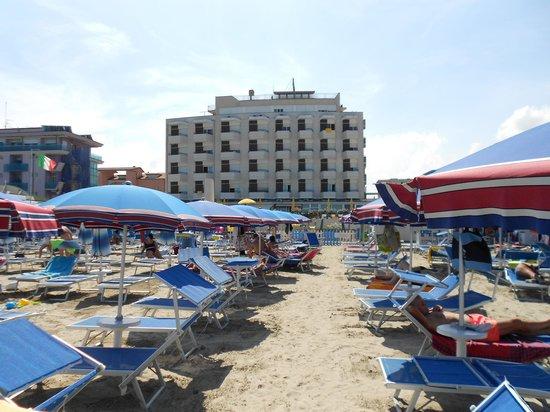 David Hotel: vista dalla spiaggia, vicinissimo!