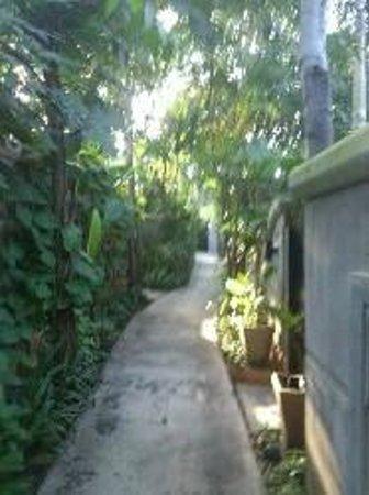 Movenpick Asara Resort & Spa Hua Hin: Gång ner till en av poolerna ,restaurang och strand