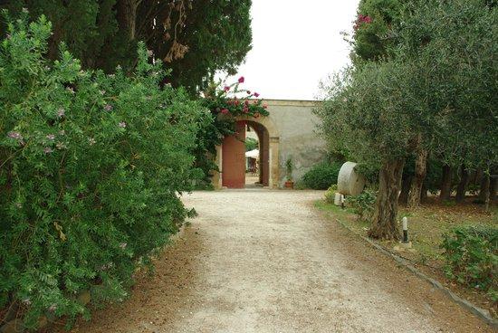 L'ingresso dell'azienda Fontanasalsa