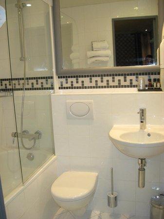 Hôtel Apollon Montparnasse : Bathroom half of room