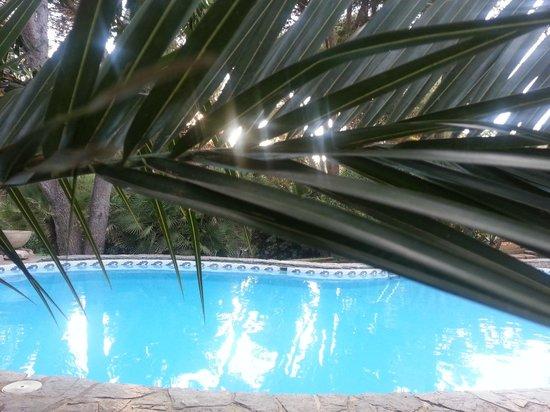 Lago Garden Hotel: Pool