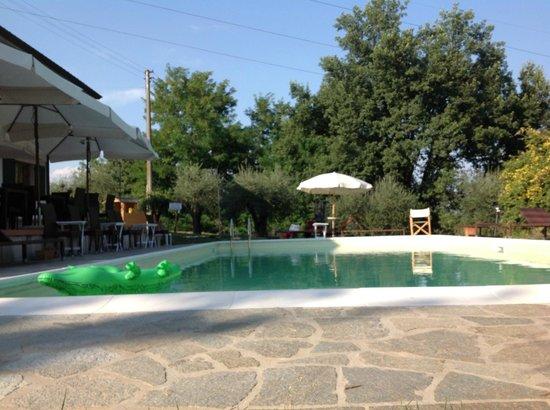 Agriturismo Le Contesse My Italian Country House: Vista Piscina