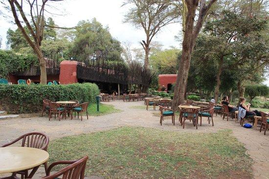 Amboseli Serena Safari Lodge: Terrace