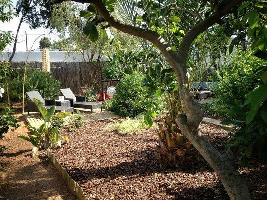 """Ibizazen: jardin """"privé"""" de la suite"""