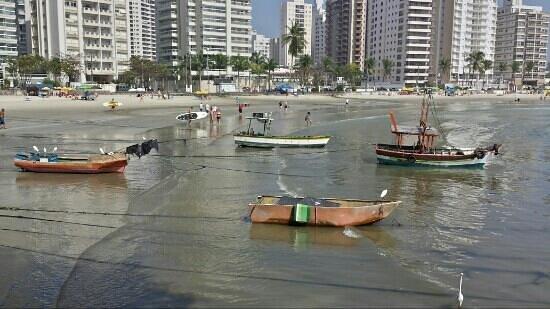 Pitangueiras beach: barcos de pescadores