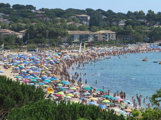 ILUNION Caleta Park: Stranden