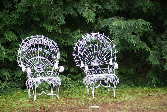 Wilson Lake Inn: im Garten am See