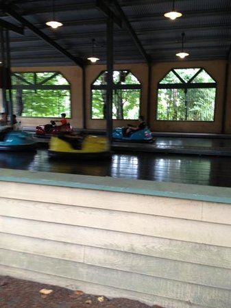 Wild Waves & Enchanted Village : Kids bumper cars.