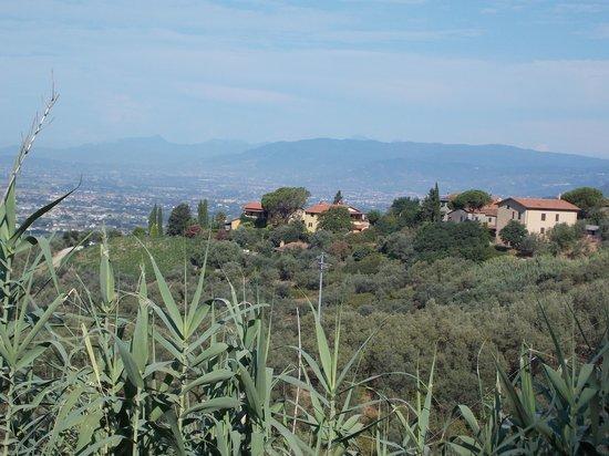 Farmhouse Residence Casa Italia: Links de casa