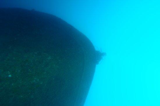 Diving nord Adriatico Jesolo: Relitti