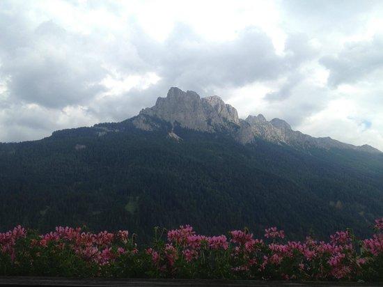 Alpen Hotel Corona Sport & Wellness: Panorama dal 3 piano..alpen Room..