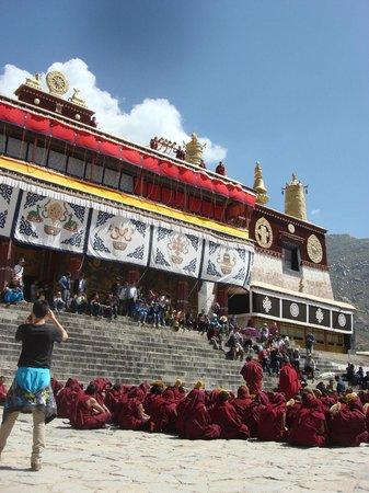 Trekking Team Pvt. Ltd. - Day Tours: Tibetan Monastery