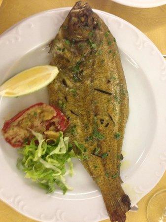 Hotel Costa Verde : Secondo di pesce