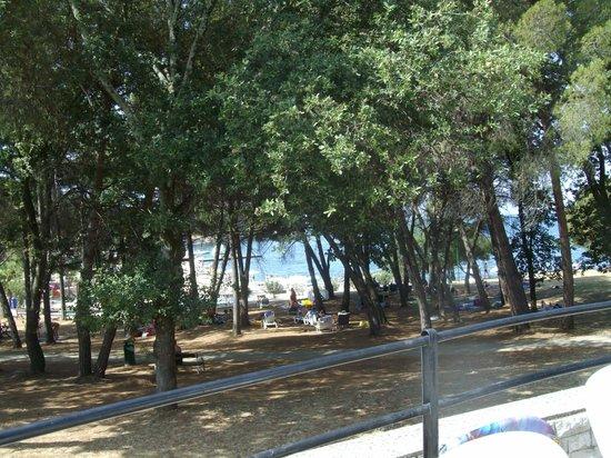 Valamar Rubin Hotel: Vista dalla piscina