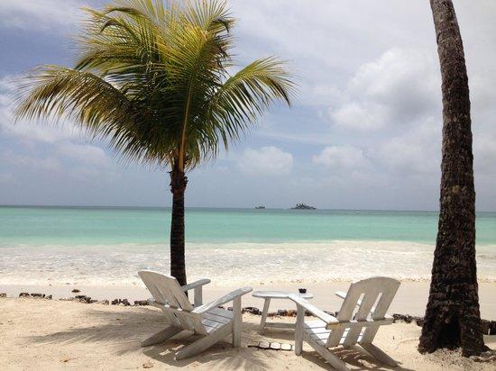 Paradise Sun: Relaxing
