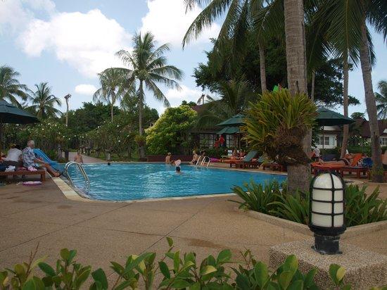 Coco Palm Beach Resort: Hotelpool