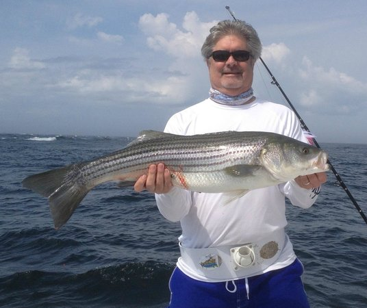 Magellan Sportsfishing Charters : First Striper of the Day!