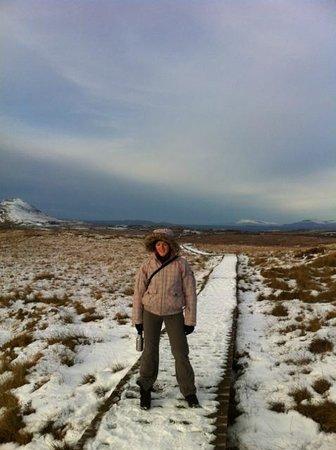 Ballygarvan, Ireland: Beautiful Irish winter scenery